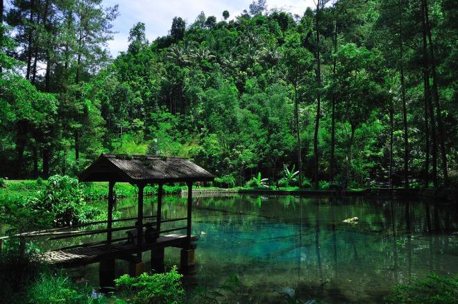 Wisata Alam Telaga Rambut Monte